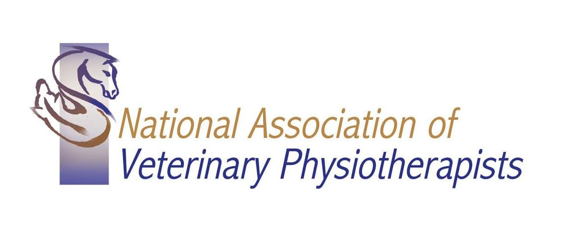 Sophie Watts Veterinary Physiotherapy